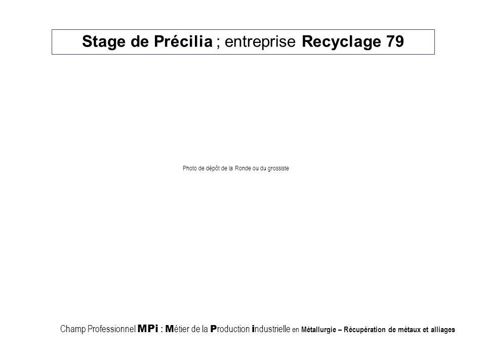 Stage de Précilia ; entreprise Recyclage 79 Champ Professionnel MPi : M étier de la P roduction i ndustrielle en Métallurgie – Récupération de métaux et alliages Photo de dépôt de la Ronde ou du grossiste