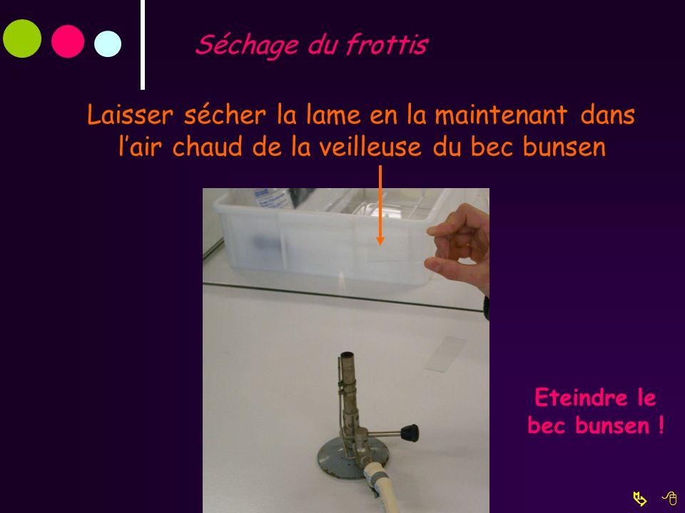 Séchage du frottis Laisser sécher la lame en la maintenant dans lair chaud de la veilleuse du bec bunsen Eteindre le bec bunsen !