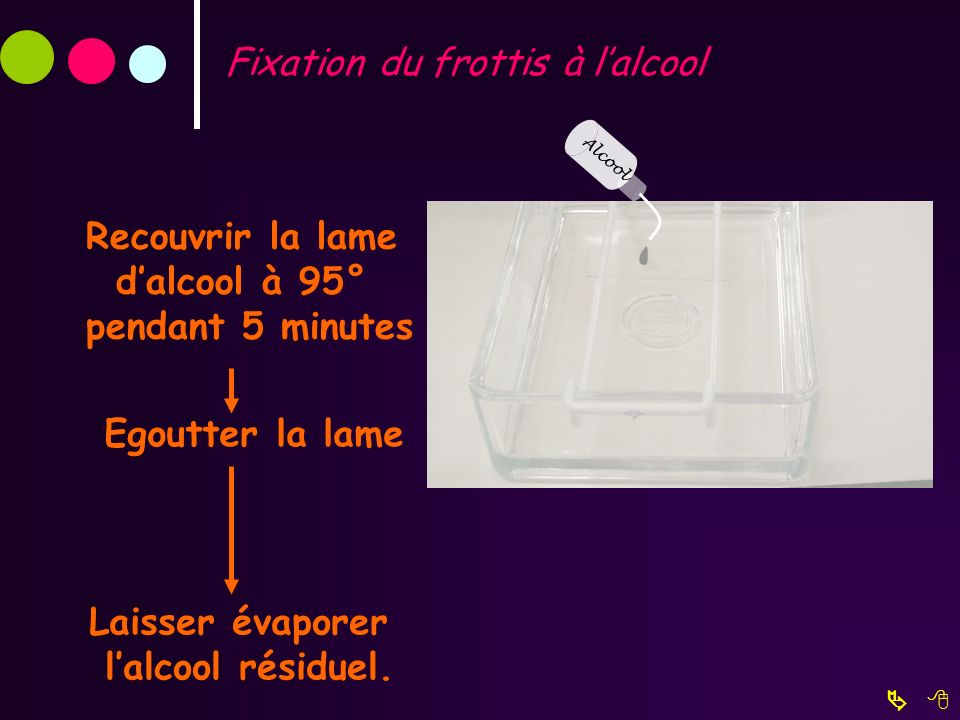 Fixation du frottis à lalcool Recouvrir la lame dalcool à 95° pendant 5 minutes Laisser évaporer lalcool résiduel. Alcool Egoutter la lame