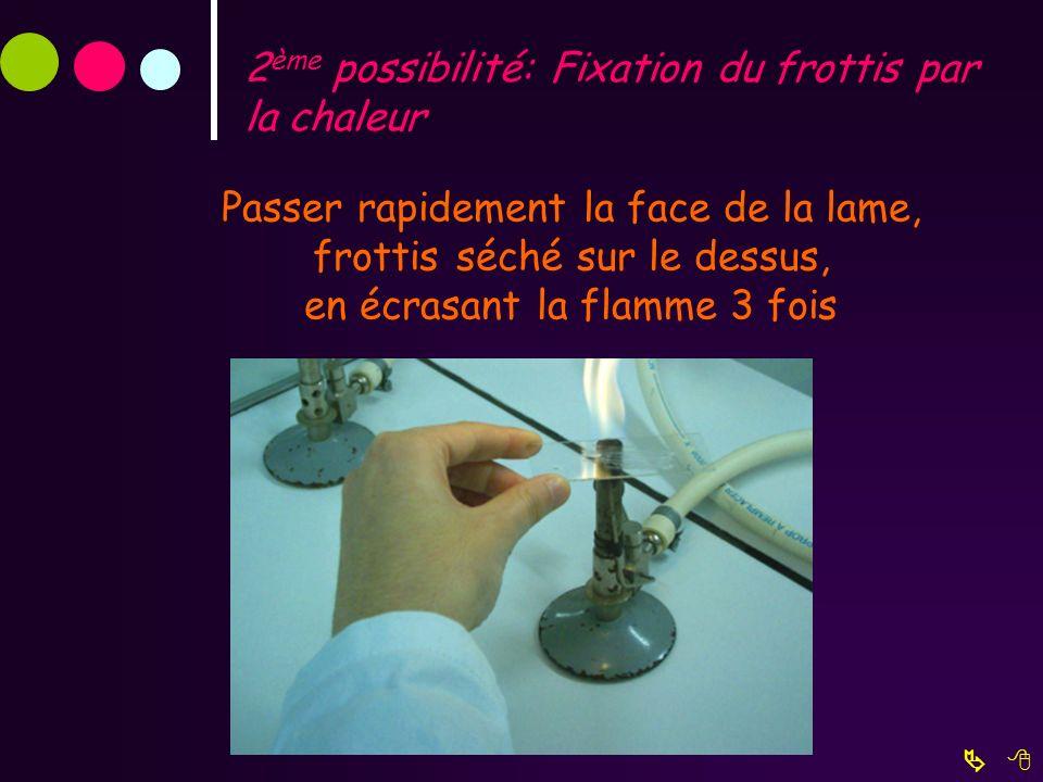 2 ème possibilité: Fixation du frottis par la chaleur Passer rapidement la face de la lame, frottis séché sur le dessus, en écrasant la flamme 3 fois