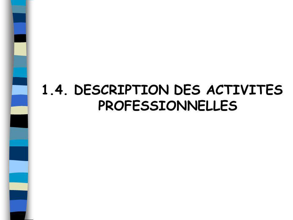 1.4. DESCRIPTION DES ACTIVITES PROFESSIONNELLES