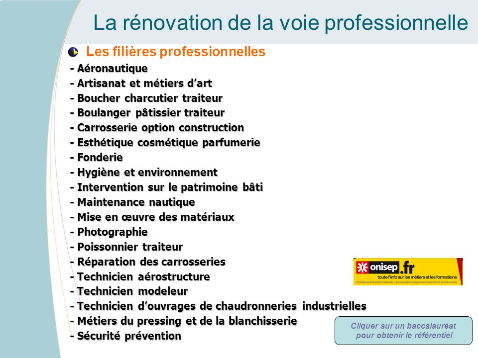 La rénovation de la voie professionnelle Les filières professionnelles - Aéronautique - Aéronautique - Artisanat et métiers dart - Artisanat et métier