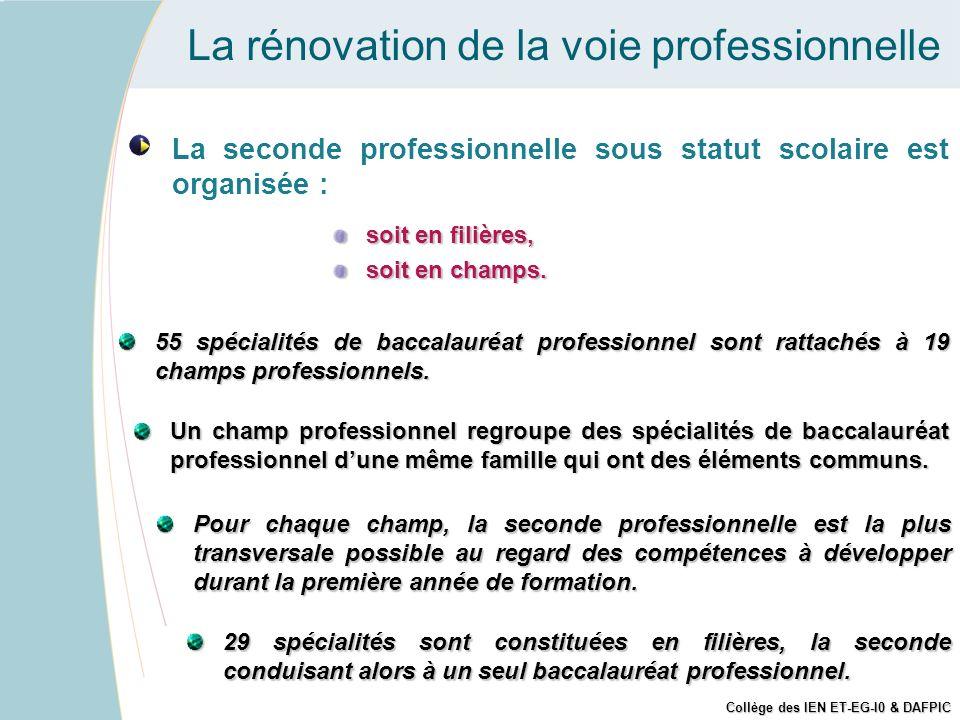 La rénovation de la voie professionnelle La seconde professionnelle sous statut scolaire est organisée : soit en filières, soit en champs. Un champ pr