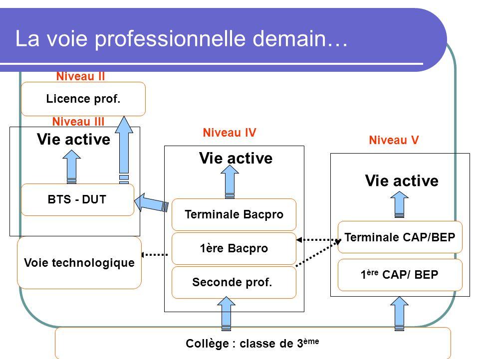 DAFPIC- GROUPE IEN ET/EG - Académie de Poitiers La voie professionnelle demain… BTS - DUT Terminale Bacpro Collège : classe de 3 ème 1ère Bacpro Secon
