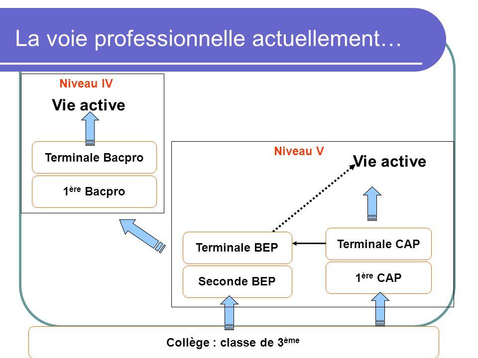 DAFPIC- GROUPE IEN ET/EG - Académie de Poitiers La voie professionnelle actuellement… Terminale Bacpro 1 ère Bacpro Collège : classe de 3 ème Terminal