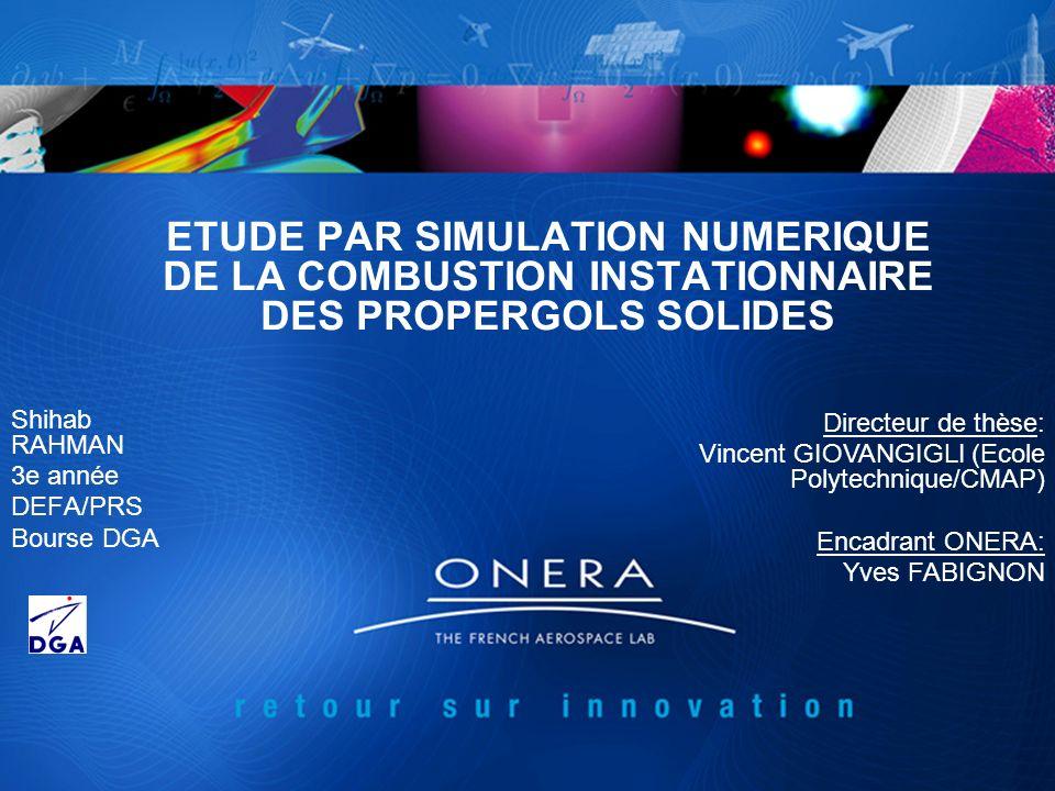 12 DEFA/PRSJDD2011 Combustion stationnaire : calcul de coefficients de sensibilité surévalué … Intro | Comb.
