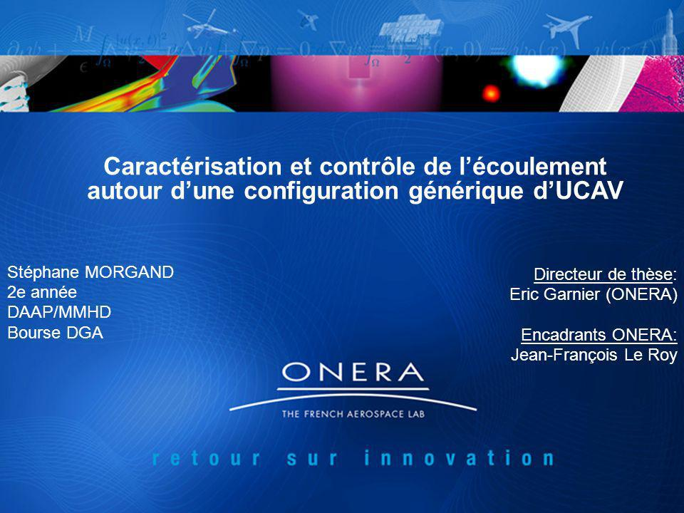 Caractérisation et contrôle de lécoulement autour dune configuration générique dUCAV Stéphane MORGAND 2e année DAAP/MMHD Bourse DGA Directeur de thèse