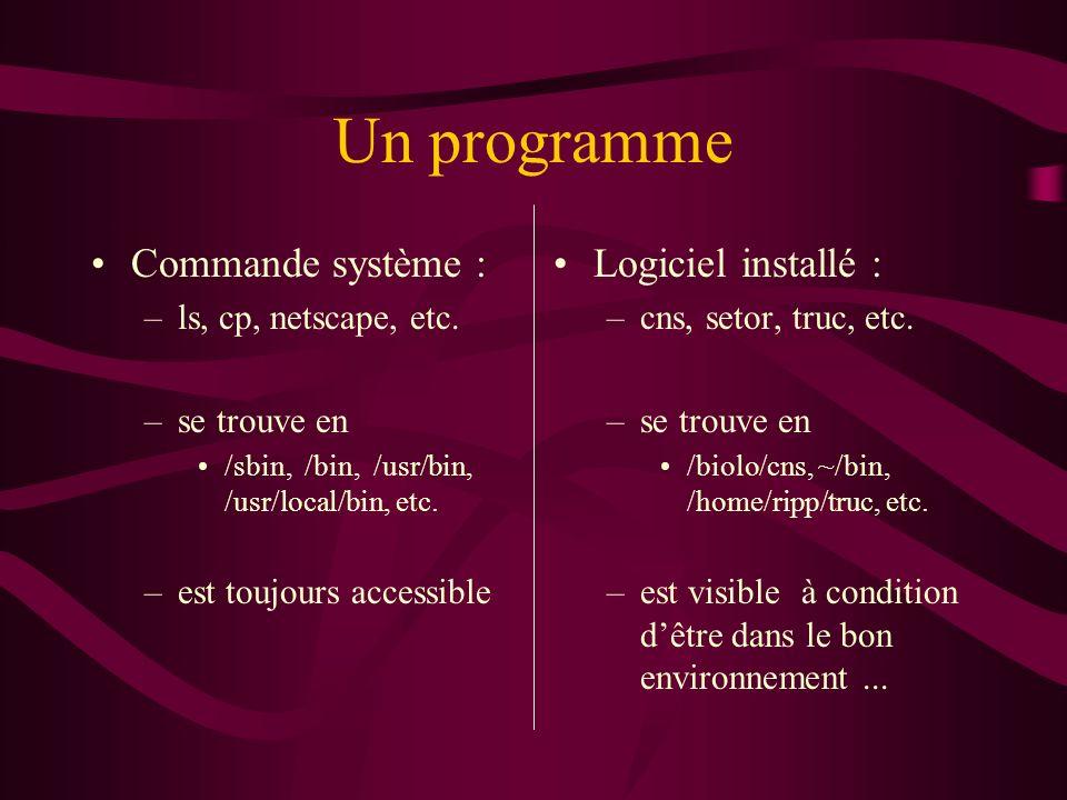 Un programme Commande système : –ls, cp, netscape, etc.
