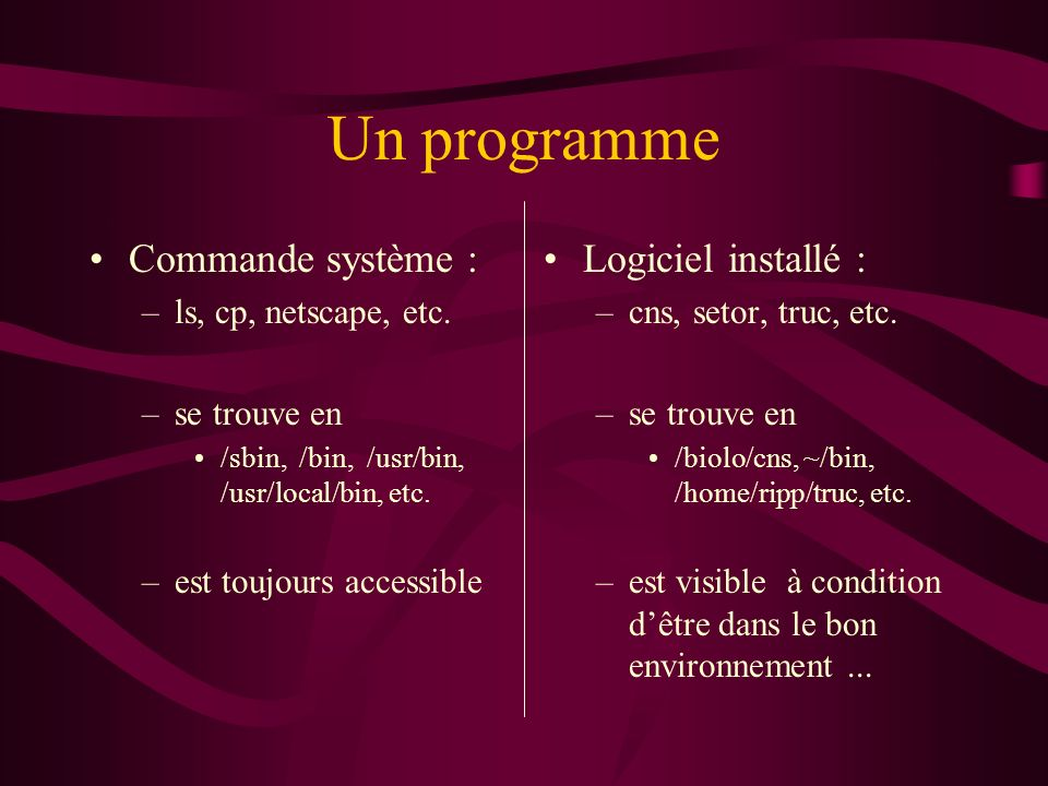 Un programme Commande système : –ls, cp, netscape, etc. –se trouve en /sbin, /bin, /usr/bin, /usr/local/bin, etc. –est toujours accessible Logiciel in