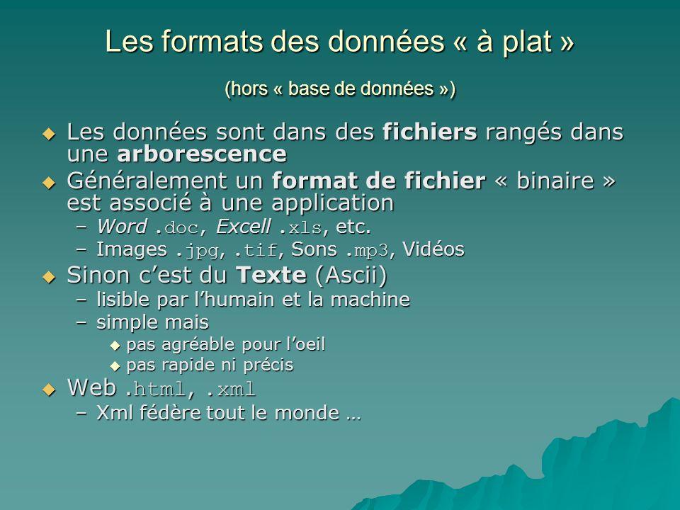 Les formats des données « à plat » (hors « base de données ») Les données sont dans des fichiers rangés dans une arborescence Les données sont dans des fichiers rangés dans une arborescence Généralement un format de fichier « binaire » est associé à une application Généralement un format de fichier « binaire » est associé à une application –Word.doc, Excell.xls, etc.