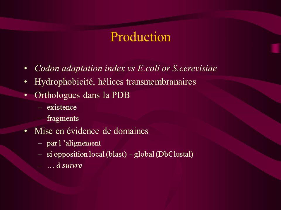 Codon adaptation index vs E.coli or S.cerevisiae Hydrophobicité, hélices transmembranaires Orthologues dans la PDB –existence –fragments Mise en évide