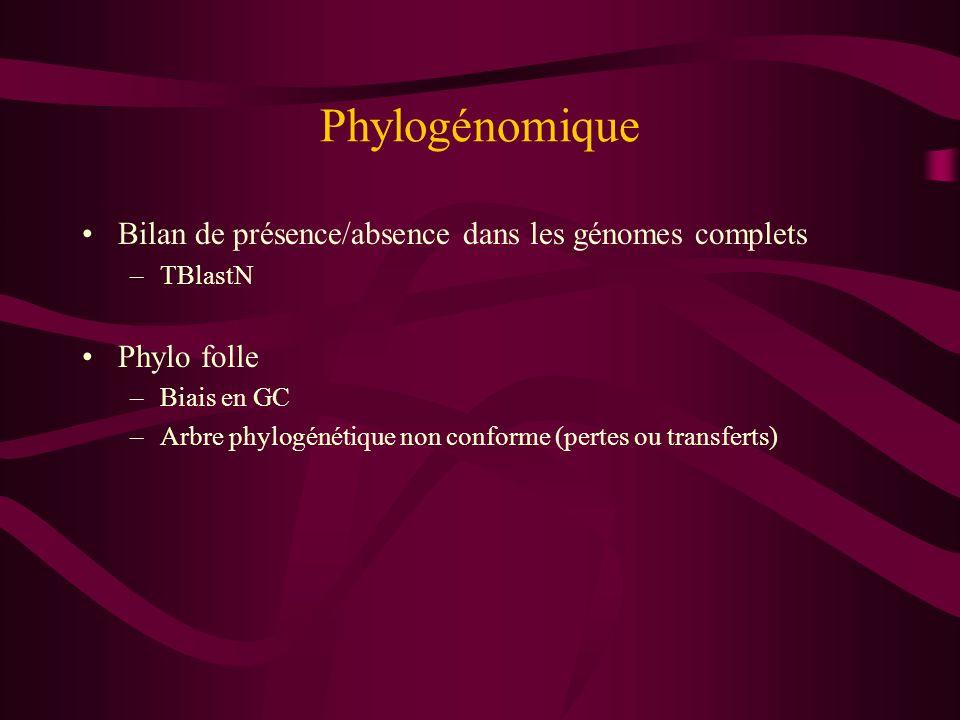 Phylogénomique Bilan de présence/absence dans les génomes complets –TBlastN Phylo folle –Biais en GC –Arbre phylogénétique non conforme (pertes ou tra