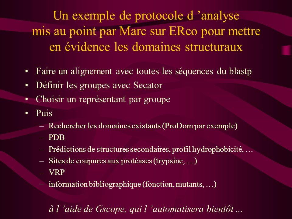 Un exemple de protocole d analyse mis au point par Marc sur ERco pour mettre en évidence les domaines structuraux Faire un alignement avec toutes les