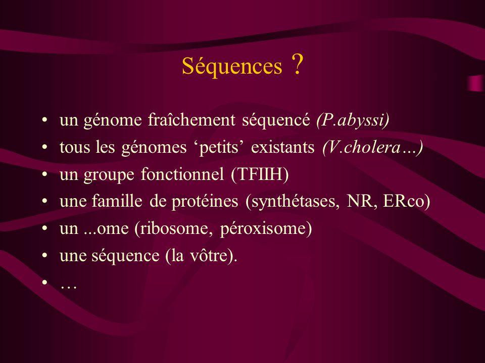 Séquences ? un génome fraîchement séquencé (P.abyssi) tous les génomes petits existants (V.cholera…) un groupe fonctionnel (TFIIH) une famille de prot