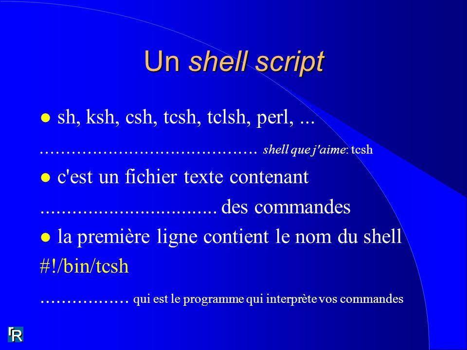 Un shell script l sh, ksh, csh, tcsh, tclsh, perl,............................................. shell que j'aime: tcsh l c'est un fichier texte conten