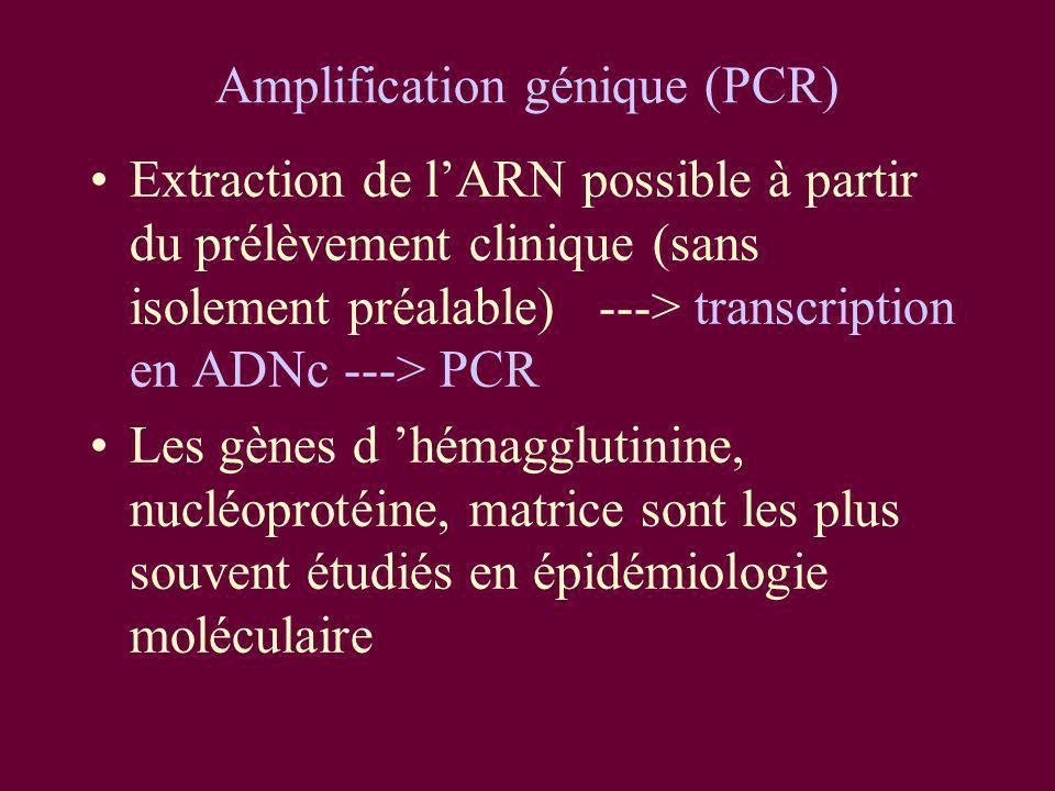 Amplification génique (PCR) Extraction de lARN possible à partir du prélèvement clinique (sans isolement préalable) ---> transcription en ADNc ---> PC