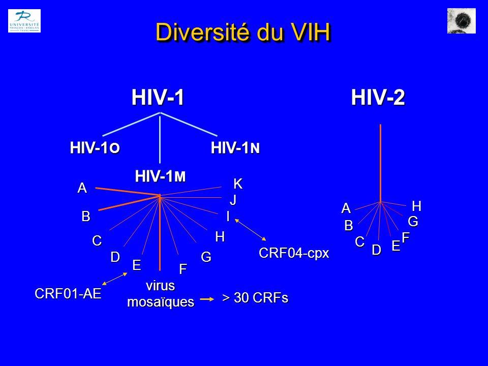 Diversité du VIH HIV-1HIV-2 HIV-1 O HIV-1 M HIV-1 N A C virusmosaïques B D E G H I J F A B C D E CRF01-AE > 30 CRFs CRF04-cpx K F H G