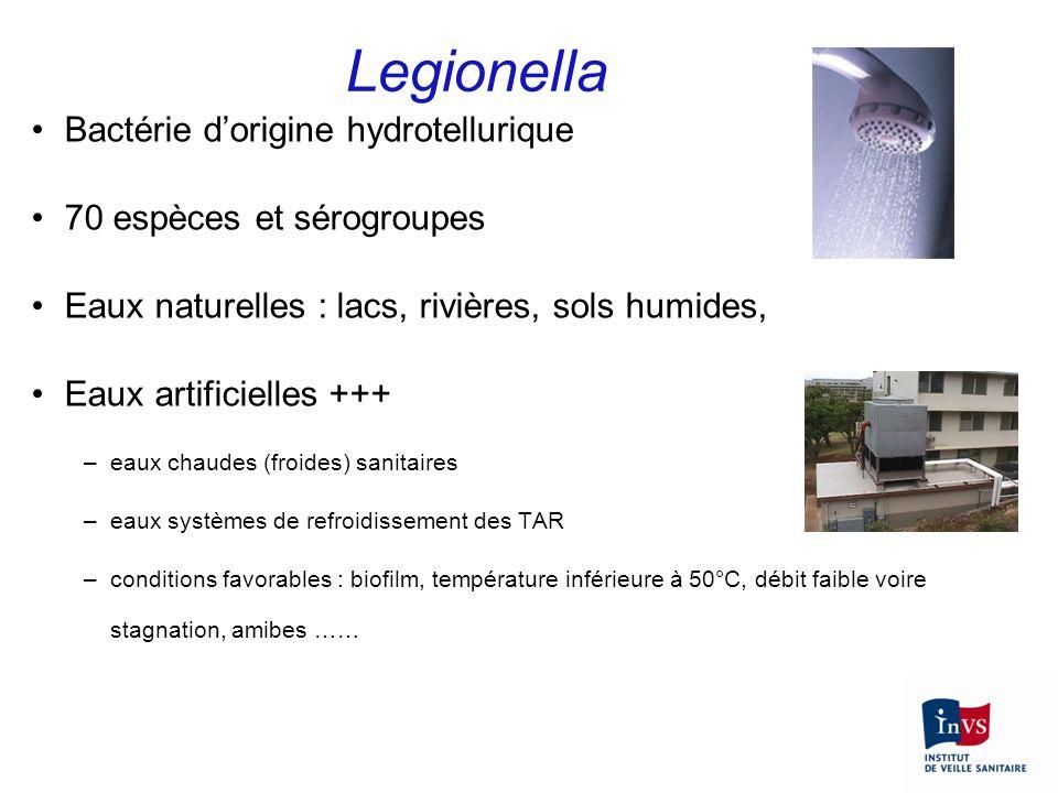 Legionella Bactérie dorigine hydrotellurique 70 espèces et sérogroupes Eaux naturelles : lacs, rivières, sols humides, Eaux artificielles +++ –eaux ch