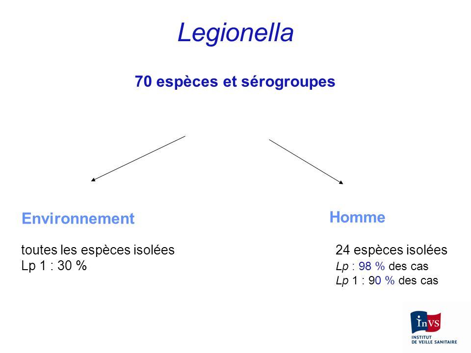 Legionella 70 espèces et sérogroupes Environnement Homme toutes les espèces isolées Lp 1 : 30 % 24 espèces isolées Lp : 98 % des cas Lp 1 : 90 % des c