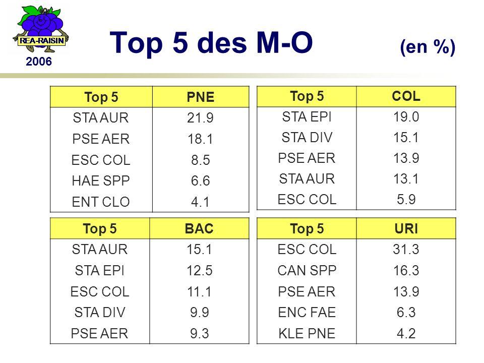 2006 Top 5 des M-O (en %) Top 5PNE STA AUR21.9 PSE AER18.1 ESC COL8.5 HAE SPP6.6 ENT CLO4.1 Top 5BAC STA AUR15.1 STA EPI12.5 ESC COL11.1 STA DIV9.9 PSE AER9.3 Top 5COL STA EPI19.0 STA DIV15.1 PSE AER13.9 STA AUR13.1 ESC COL5.9 Top 5URI ESC COL31.3 CAN SPP16.3 PSE AER13.9 ENC FAE6.3 KLE PNE4.2