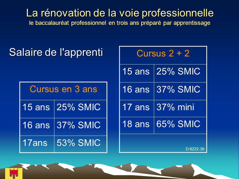 La rénovation de la voie professionnelle le baccalauréat professionnel en trois ans préparé par apprentissage Salaire de l apprenti Cursus en 3 ans 15 ans25% SMIC 16 ans37% SMIC 17ans53% SMIC Cursus 2 + 2 15 ans25% SMIC 16 ans37% SMIC 17 ans37% mini 18 ans65% SMIC D 6222-30