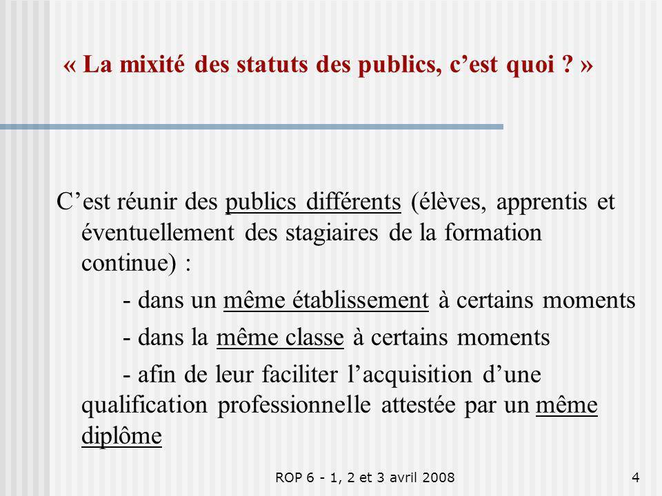 ROP 6 - 1, 2 et 3 avril 20084 « La mixité des statuts des publics, cest quoi ? » Cest réunir des publics différents (élèves, apprentis et éventuelleme