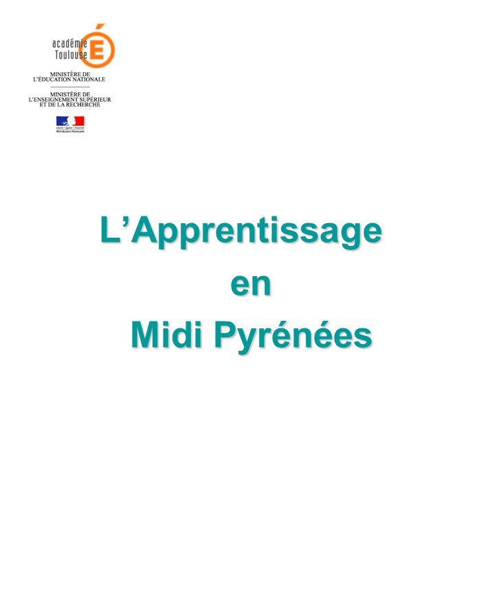 LApprentissage en en Midi Pyrénées Midi Pyrénées