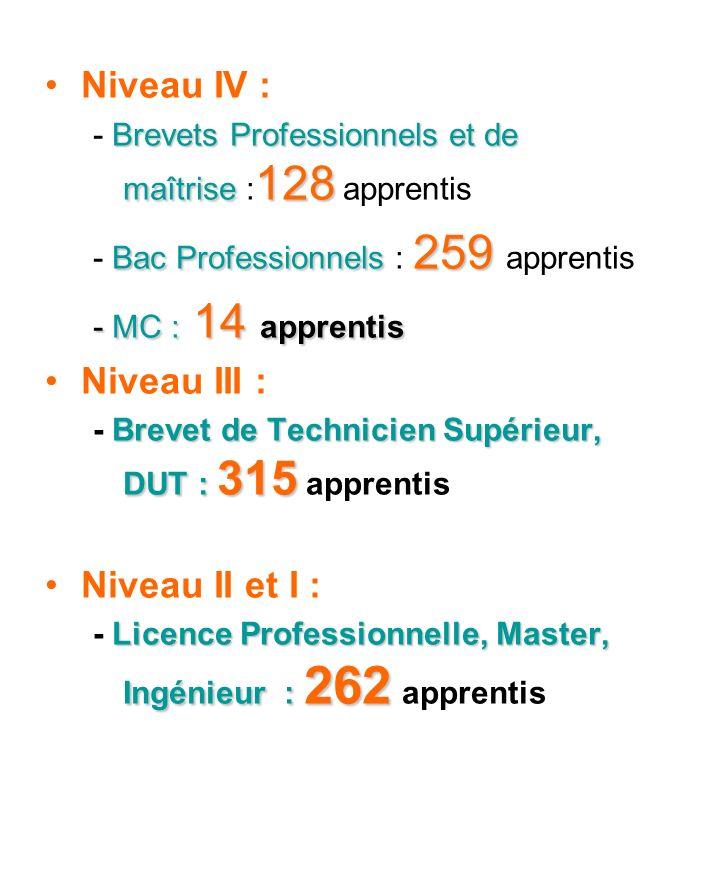 Niveau IV : Brevets Professionnels et de maîtrise 128 - Brevets Professionnels et de maîtrise : 128 apprentis Bac Professionnels 259 - Bac Professionn