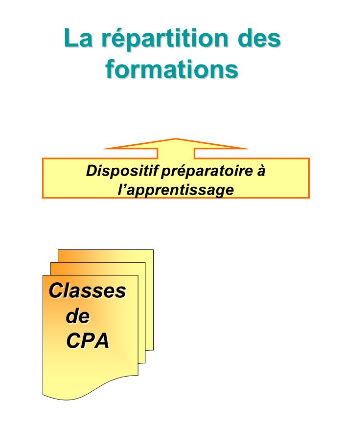 La répartition des formations Classes de CPA Dispositif préparatoire à lapprentissage