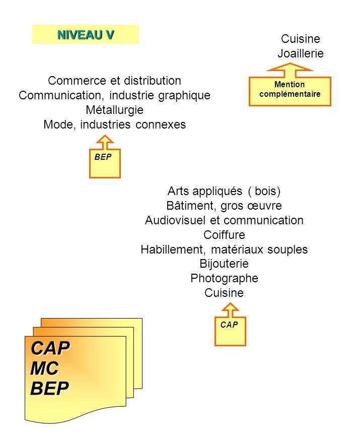 CAPMCBEP CAP BEP Mention complémentaire Arts appliqués ( bois) Bâtiment, gros œuvre Audiovisuel et communication Coiffure Habillement, matériaux soupl