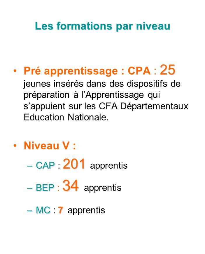 Les formations par niveau 25Pré apprentissage : CPA : 25 jeunes insérés dans des dispositifs de préparation à lApprentissage qui sappuient sur les CFA Départementaux Education Nationale.