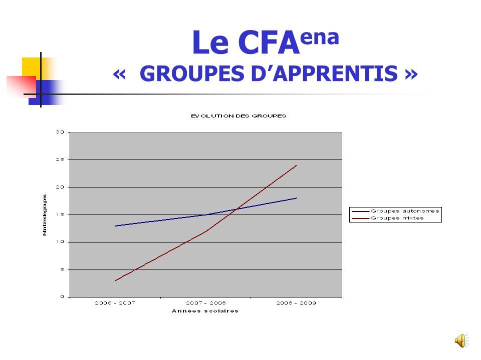 Le CFA ena « PROGRESSION EN CHIFFRES » Années scolaires2005-20062006-20072007-20082008-2009 N bre d établissements681625 N bre de formations de niveau V2345 N bre de formations de niveau IV25915 N bre de formations de niveau III331016 Total7112336 N bre d apprentis de niveau V20282428 N bre d apprentis de niveau IV2295125113 N bre d apprentis de niveau III194069128 Total61163218269