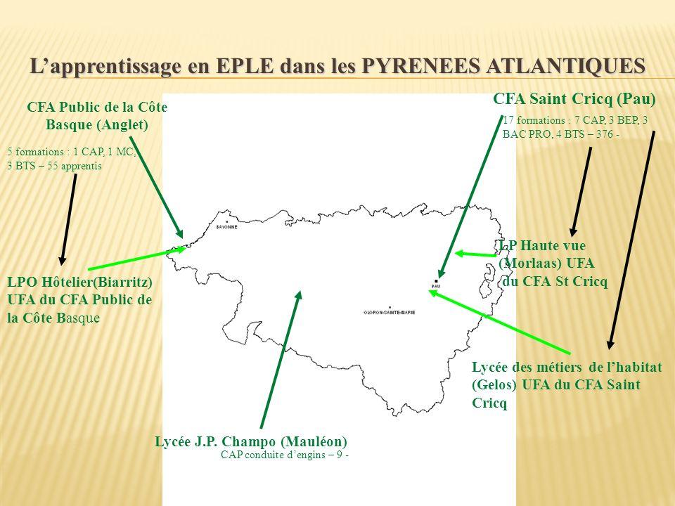 Lapprentissage en EPLE dans les PYRENEES ATLANTIQUES CFA Public de la Côte Basque (Anglet) CFA Saint Cricq (Pau) 17 formations : 7 CAP, 3 BEP, 3 BAC P