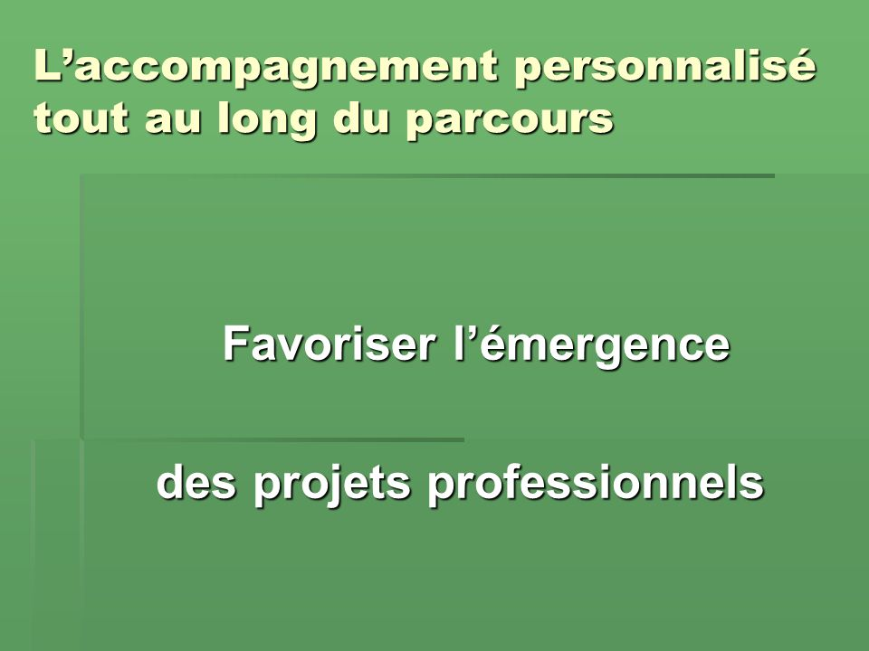 Laccompagnement personnalisé en Terminale professionnelle (non exhaustif !) Favoriser la réussite à lexamen du baccalauréat professionnel Favoriser la