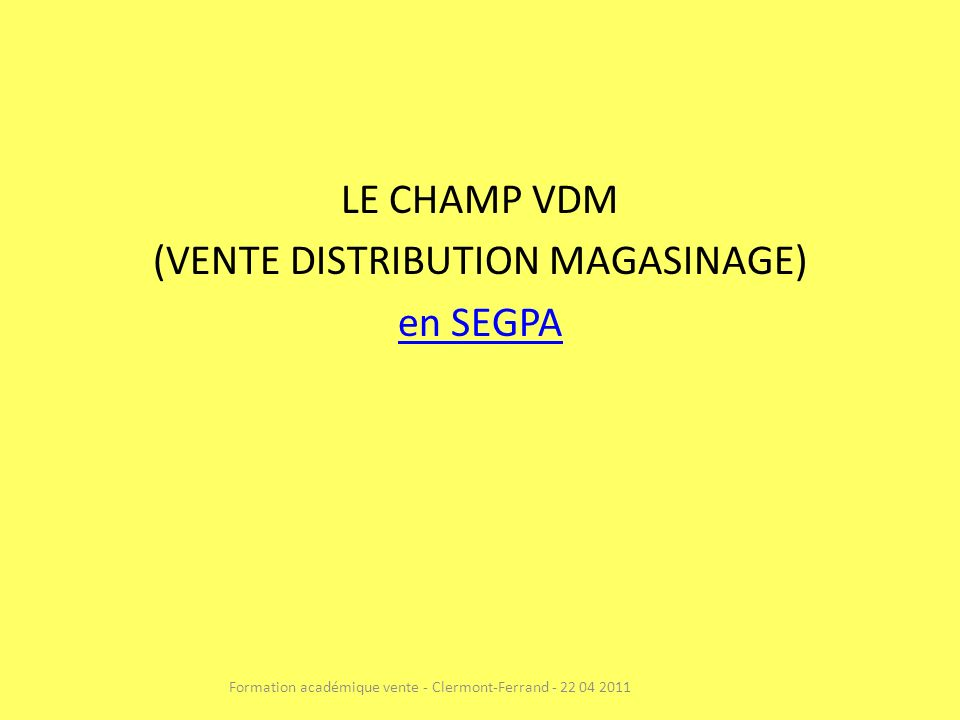 LE CHAMP VDM (VENTE DISTRIBUTION MAGASINAGE) en SEGPA Formation académique vente - Clermont-Ferrand - 22 04 2011