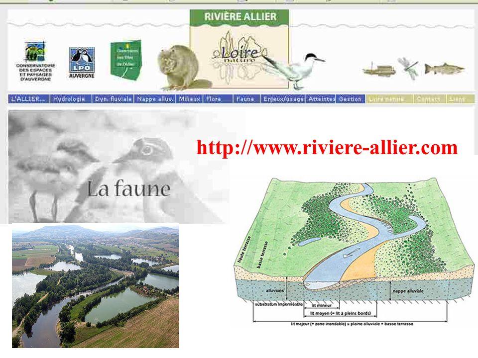 http://www.riviere-allier.com