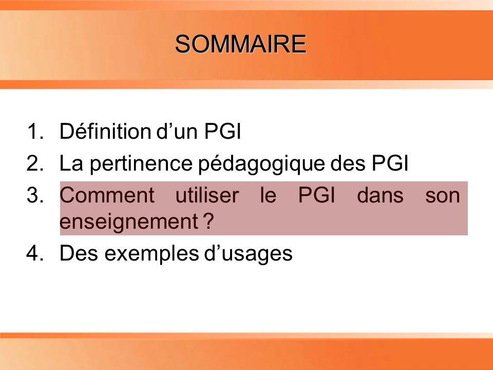 Planning 1.Définition dun PGI 2.La pertinence pédagogique des PGI 3.Comment utiliser le PGI dans son enseignement .