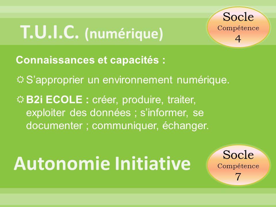 Connaissances et capacités : Sapproprier un environnement numérique. B2i ECOLE : créer, produire, traiter, exploiter des données ; sinformer, se docum