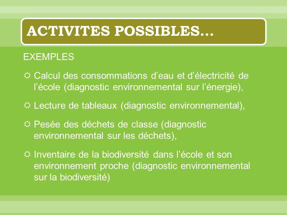 ACTIVITES POSSIBLES… EXEMPLES Calcul des consommations deau et délectricité de lécole (diagnostic environnemental sur lénergie), Lecture de tableaux (