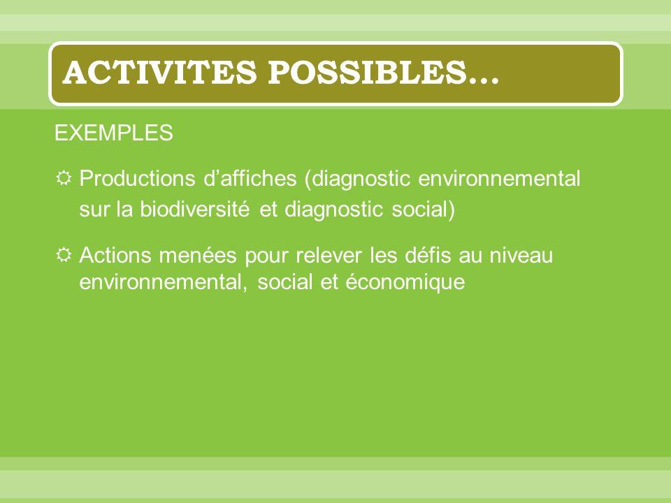 ACTIVITES POSSIBLES… EXEMPLES Productions daffiches (diagnostic environnemental sur la biodiversité et diagnostic social) Actions menées pour relever les défis au niveau environnemental, social et économique