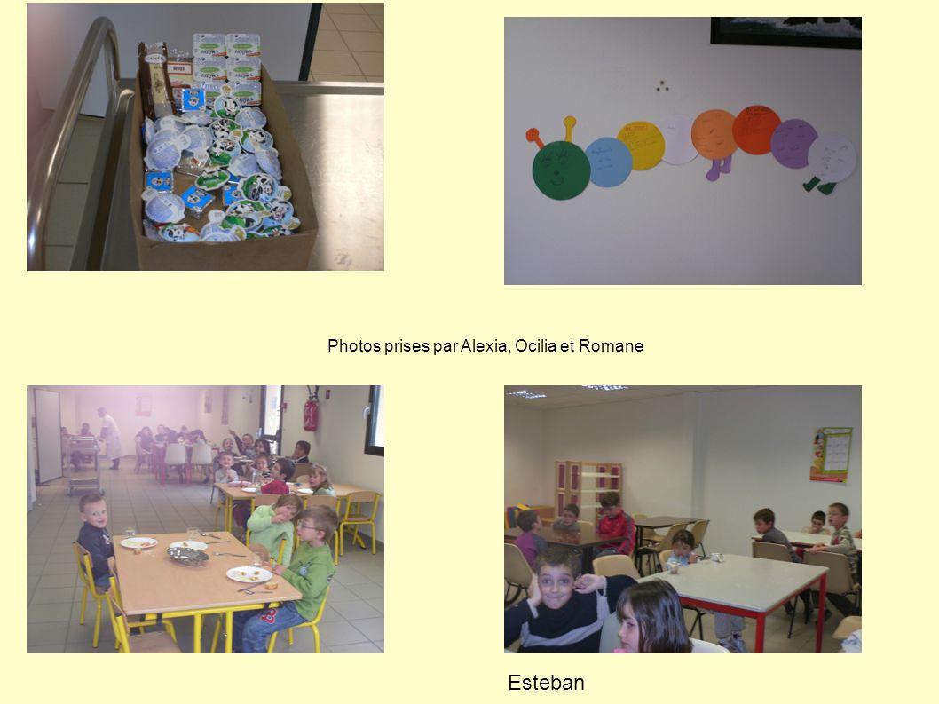 Photos prises par Alexia, Ocilia et Romane Esteban