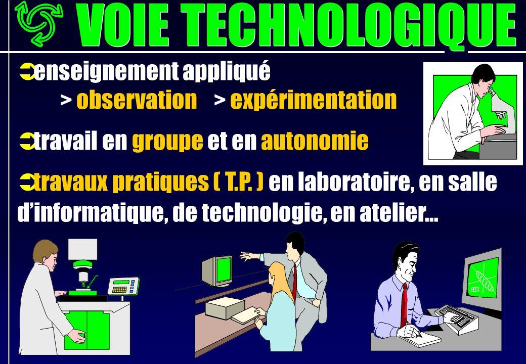 enseignement appliqué > observation > expérimentation travail en groupe et en autonomie travaux pratiques ( T.P.