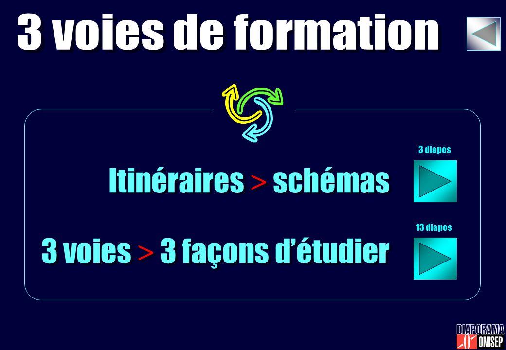 Itinéraires > schémas 3 voies > 3 façons détudier Itinéraires > schémas 3 voies > 3 façons détudier 3 diapos 13 diapos