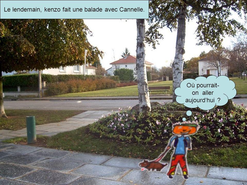 Le lendemain, kenzo fait une balade avec Cannelle. Où pourrait- on aller aujourdhui ?