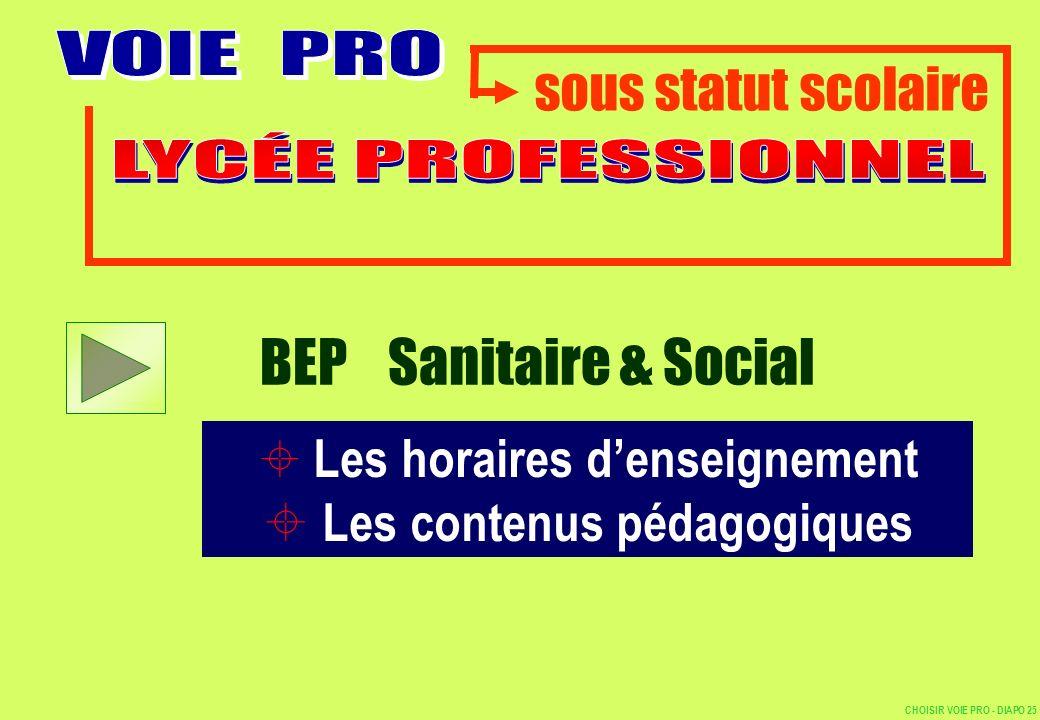 sous statut scolaire Les horaires denseignement Les contenus pédagogiques BEP Sanitaire & Social CHOISIR VOIE PRO - DIAPO 25