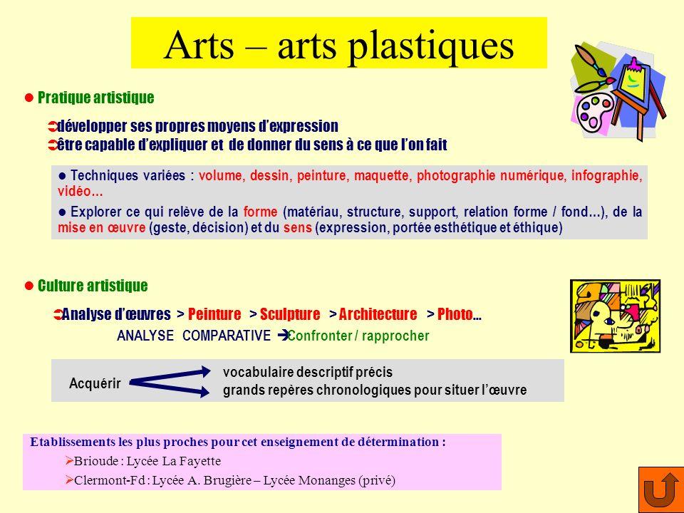 Bac L à profil artistique Recommandé pour le Enseignement combinant théorie et pratique dans un domaine artistique précis En Histoire des arts, il ny