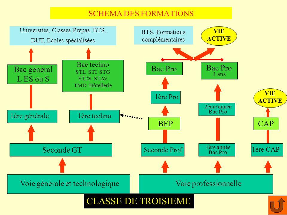 Tertiaire & Services (CAP) CAP Coiffure : Lycée M.