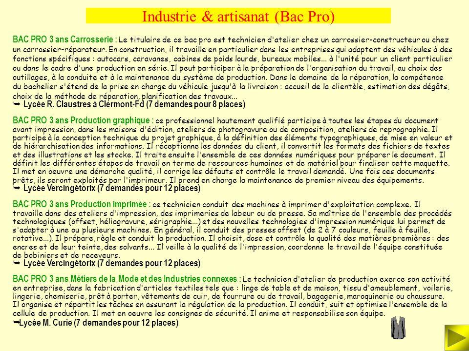 Industrie & artisanat (Bac Pro) BAC PRO 3 ans Pilotage des Systèmes de Production Automatisée : Le titulaire de ce diplôme a la responsabilité d'une l