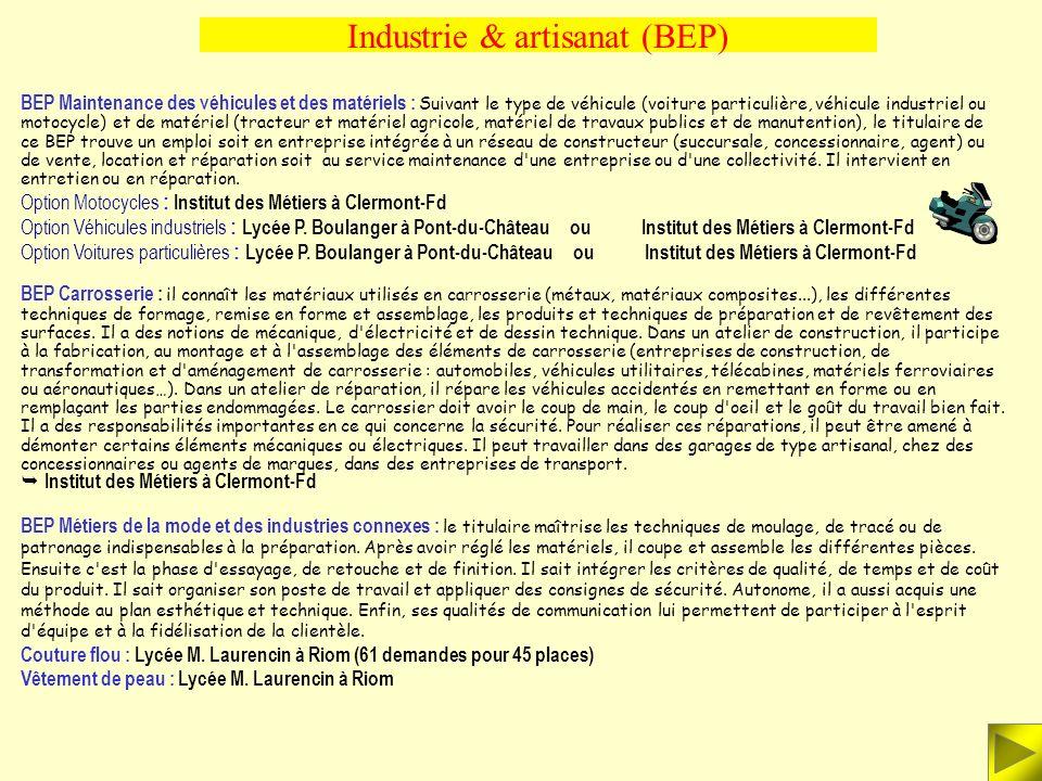 Industrie & artisanat (BEP) BEP Métiers des industries de procédés (industries chimiques, bio-industries, traitement des eaux, industries papetières)
