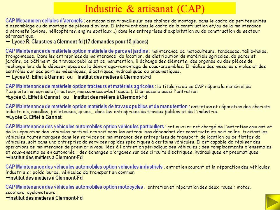 Industrie & artisanat (BEP) BEP Maintenance des véhicules et des matériels : Suivant le type de véhicule (voiture particulière, véhicule industriel ou